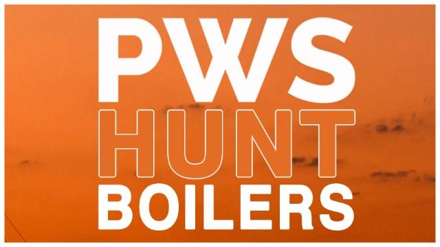 PWS-WEB-logo1.jpg