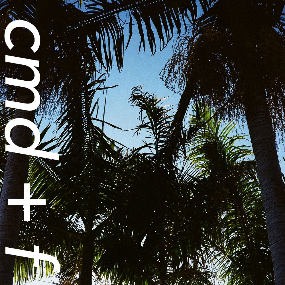 cmdf vertical palms.jpg