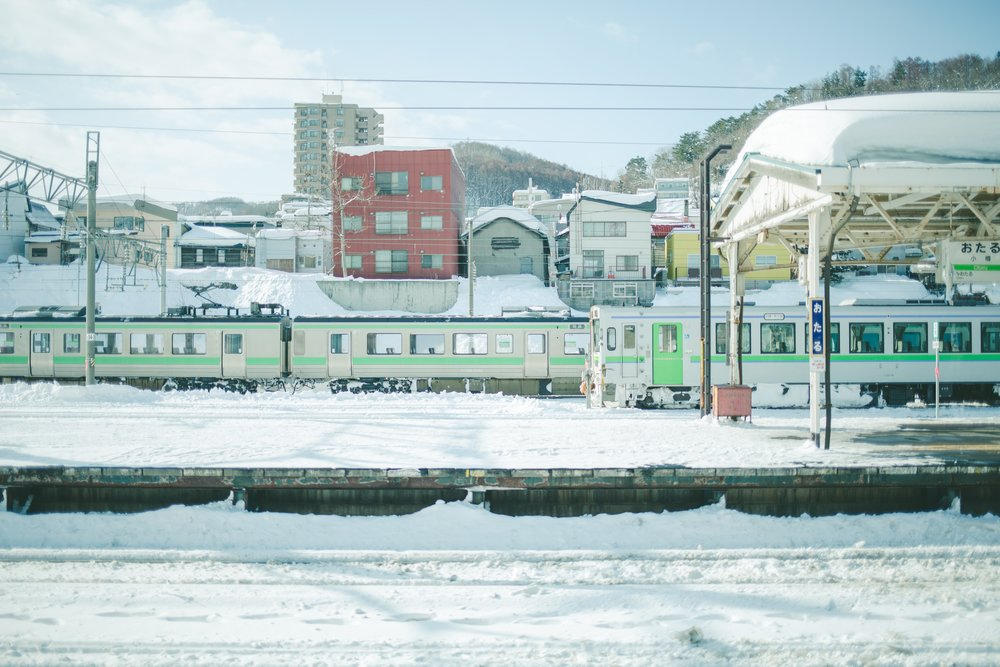 秋刀魚HYO14.jpg