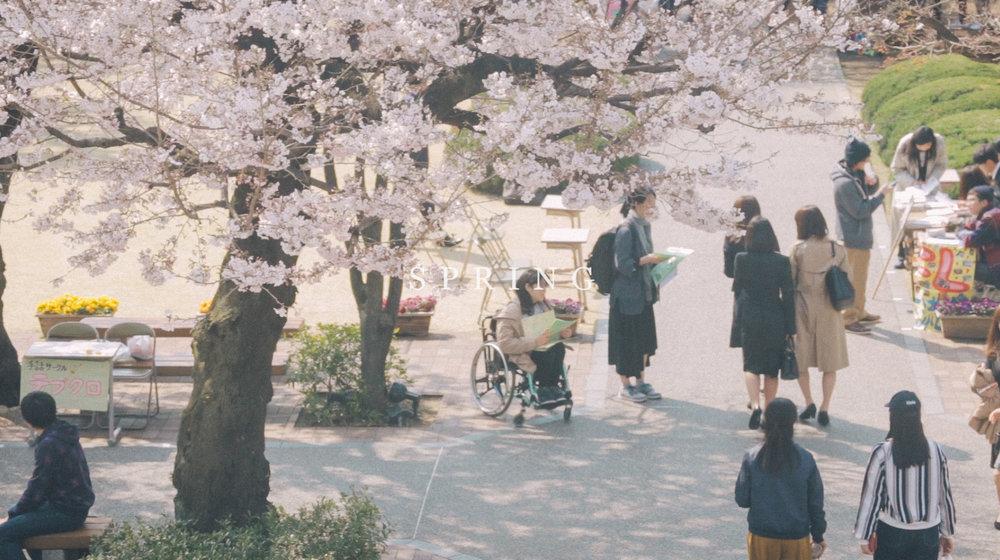 Rikkyo_Spring_th3.jpg