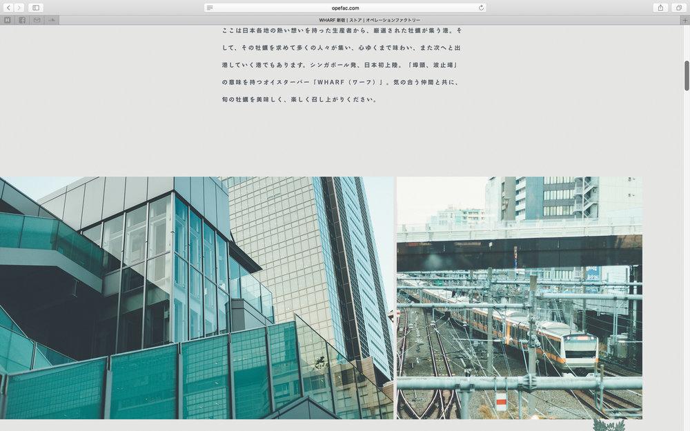 of_web-7.jpg