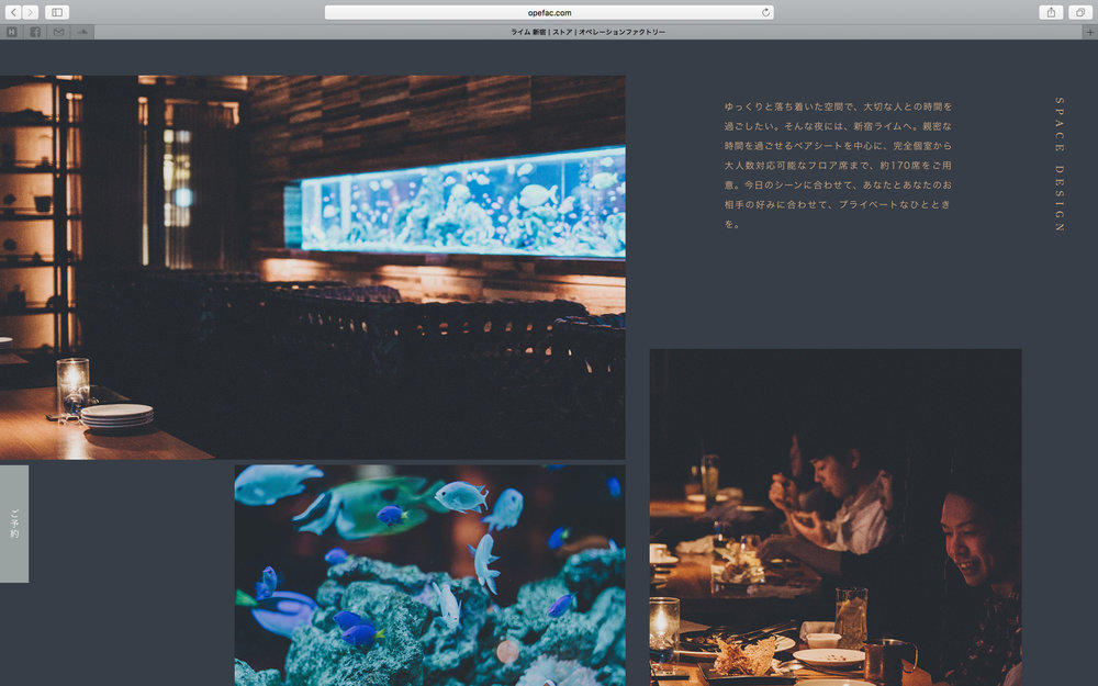 of_web-19.jpg