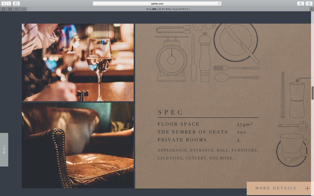 of_web-21.jpg