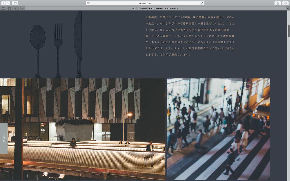 of_web-38.jpg