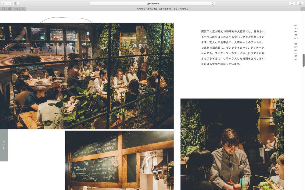 of_web-50.jpg