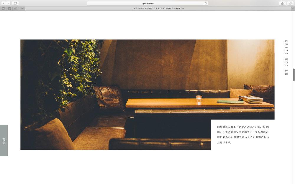of_web-51.jpg