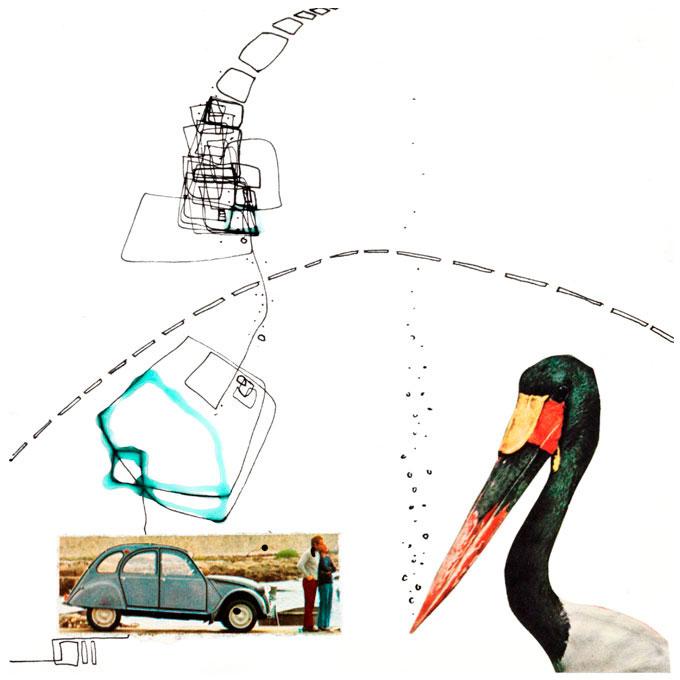Fugl og Folk