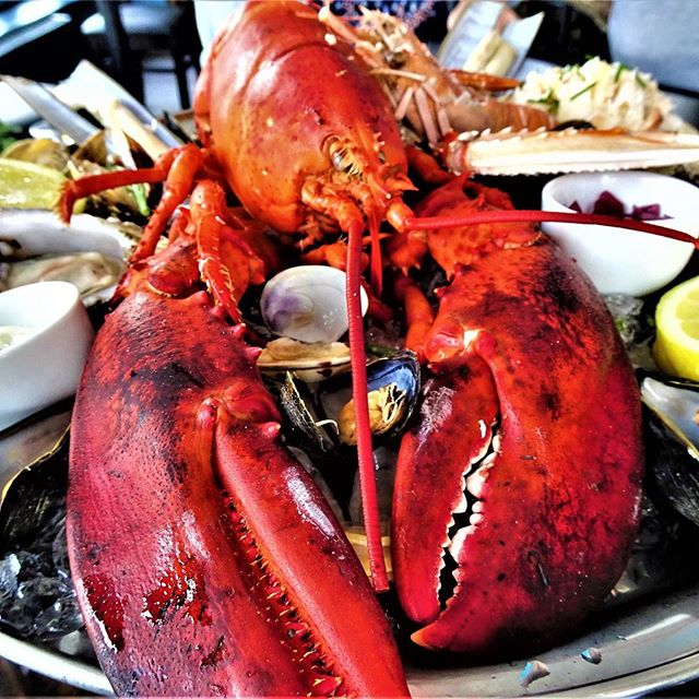 It's nearly the weekend, so the world is your lobster! #WestKirby #dining #Wirral