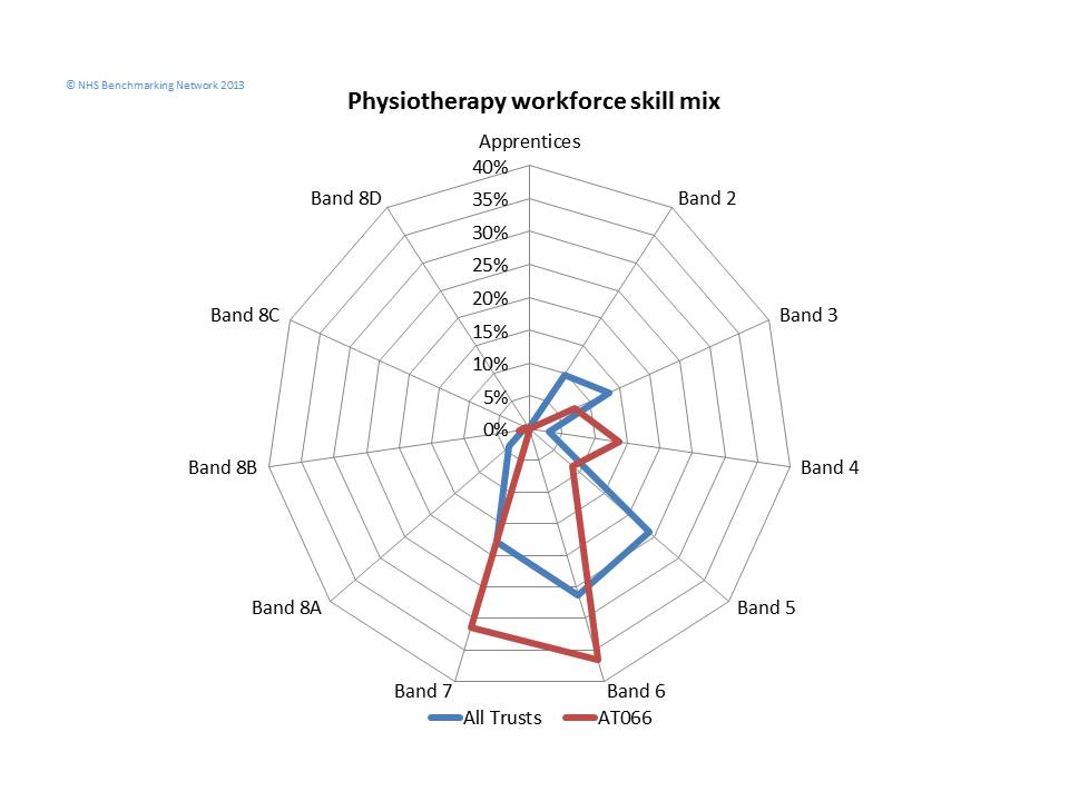 Physiotherapy Workforce Skill Matrix