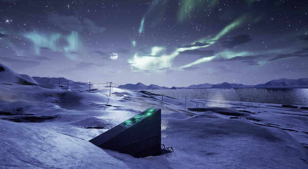Risultati immagini per svalbard seed bank aurora