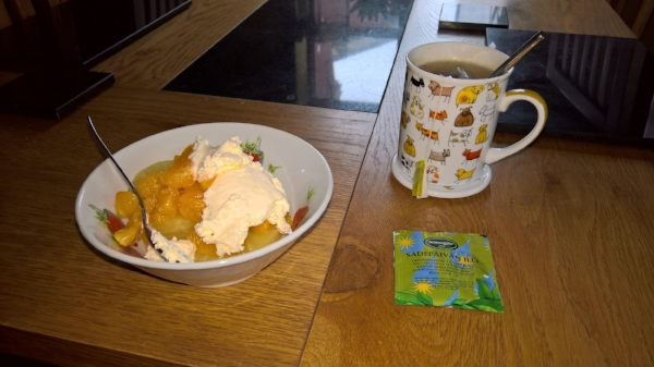 Mandarin and pineapple slices with cream on a cheery, rainy day.