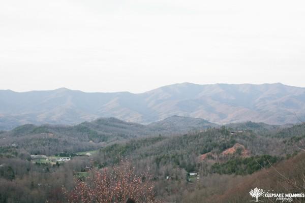 hawkesdene house mountain view