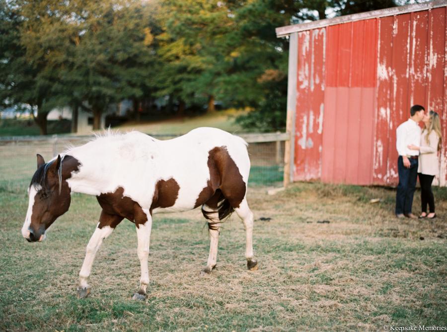 goldsboro-north-carolina-farm-engagement-photos-22.jpg