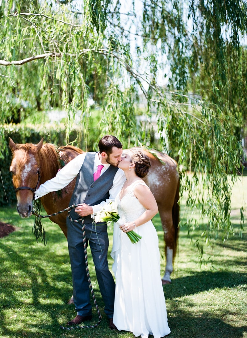 horse at north carolina wedding