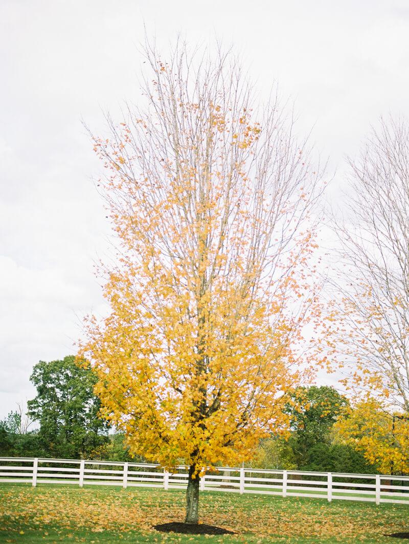 mount-ida-farm-charlottesville-va-wedding-photographers-38.jpg