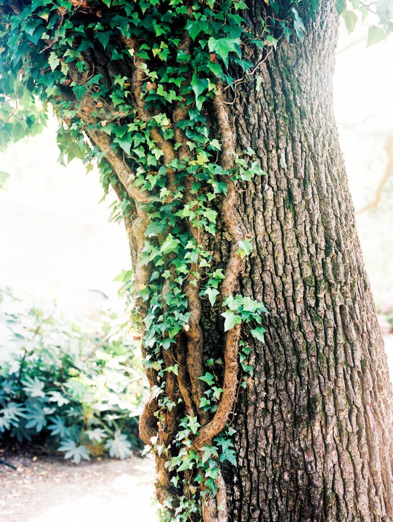 marker-137-wedding-wilmington-nc-photos-20.jpg