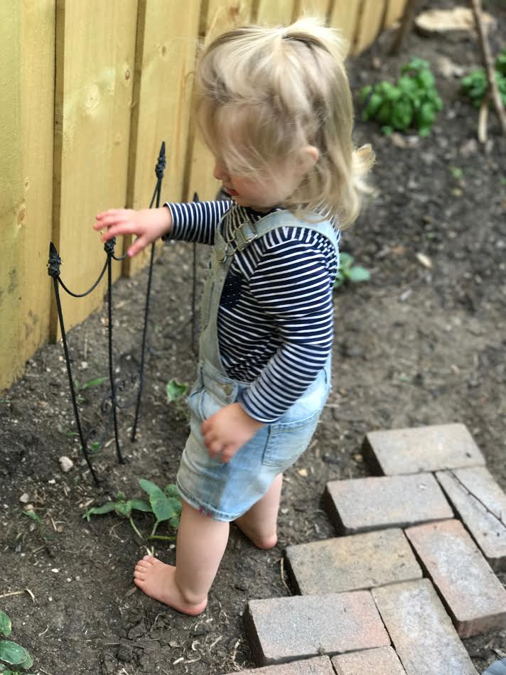Stella checking (or stepping) on the cucumbers