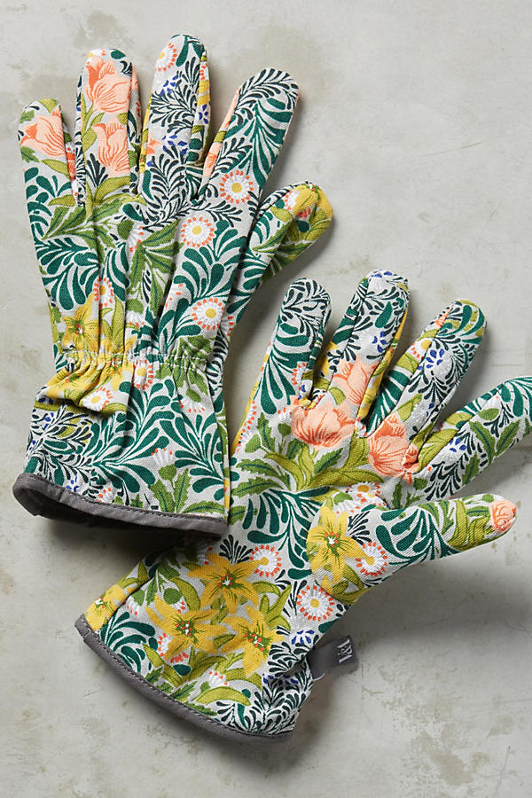 Photo. Anthropologie.com