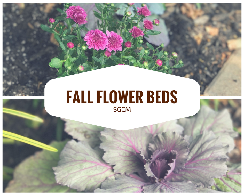 Fall Flower Beds.png