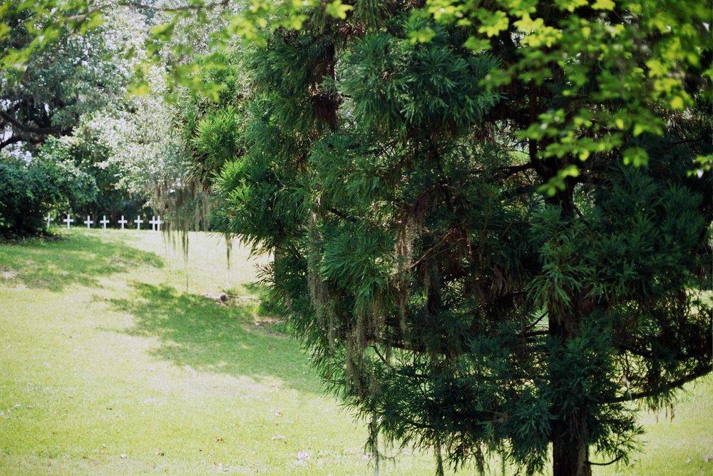 HHCharleston2012-0351.jpg