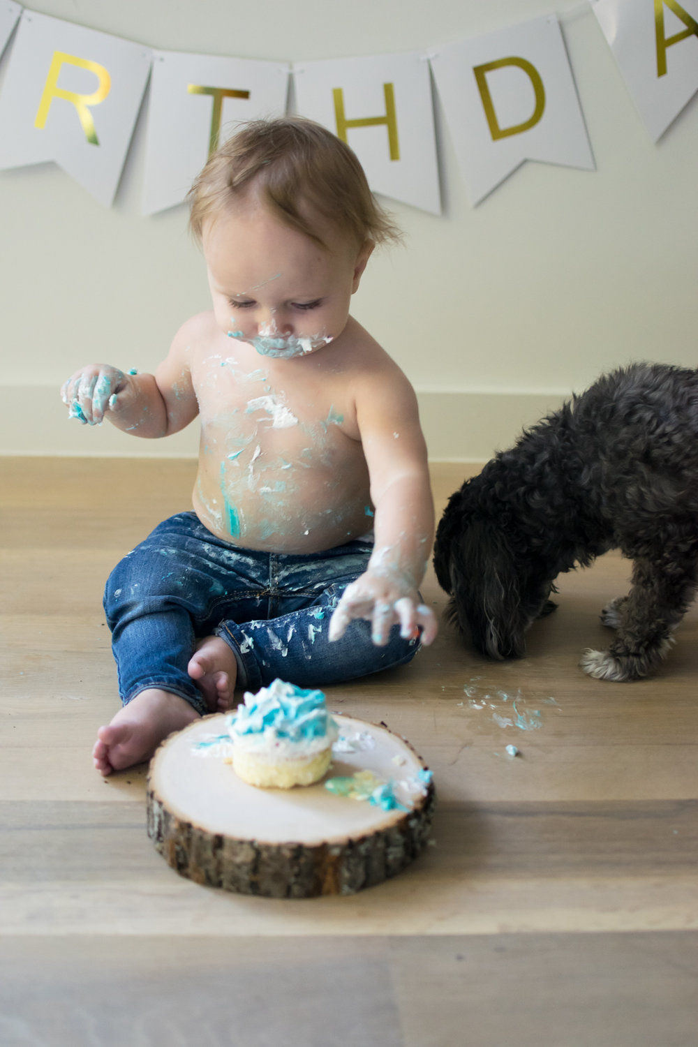 this is an image of a toddler child boy, eating his birthday cake, with icing on his face, and a dog eating the birthday cake off of the floor