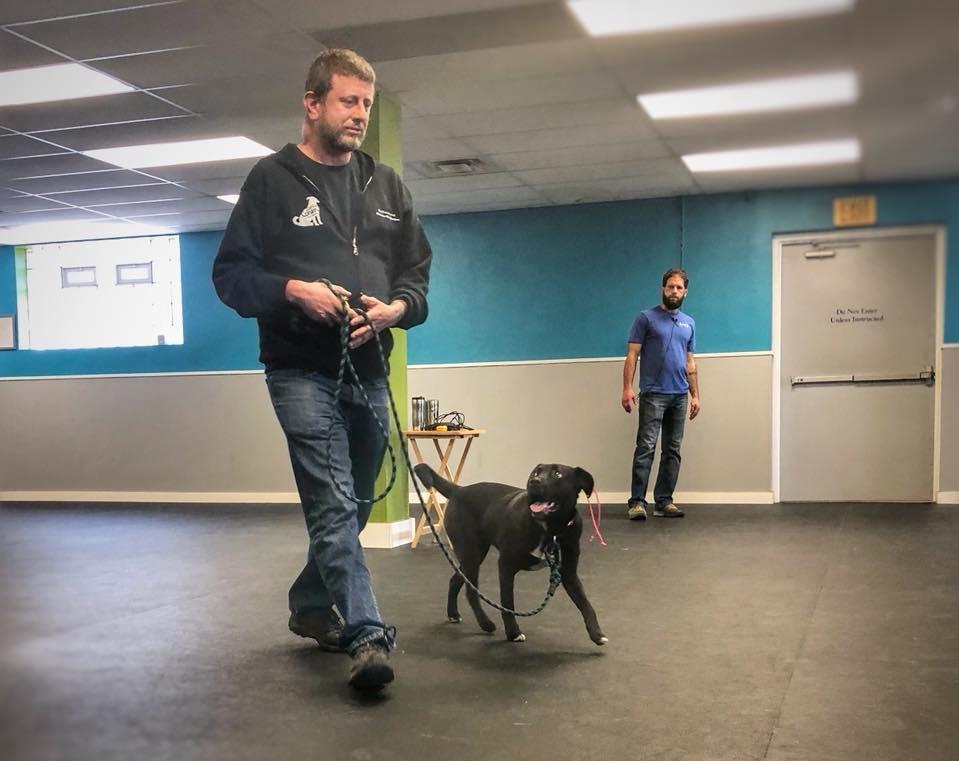 Cooper heeling with Jason at Tyler's Seminar