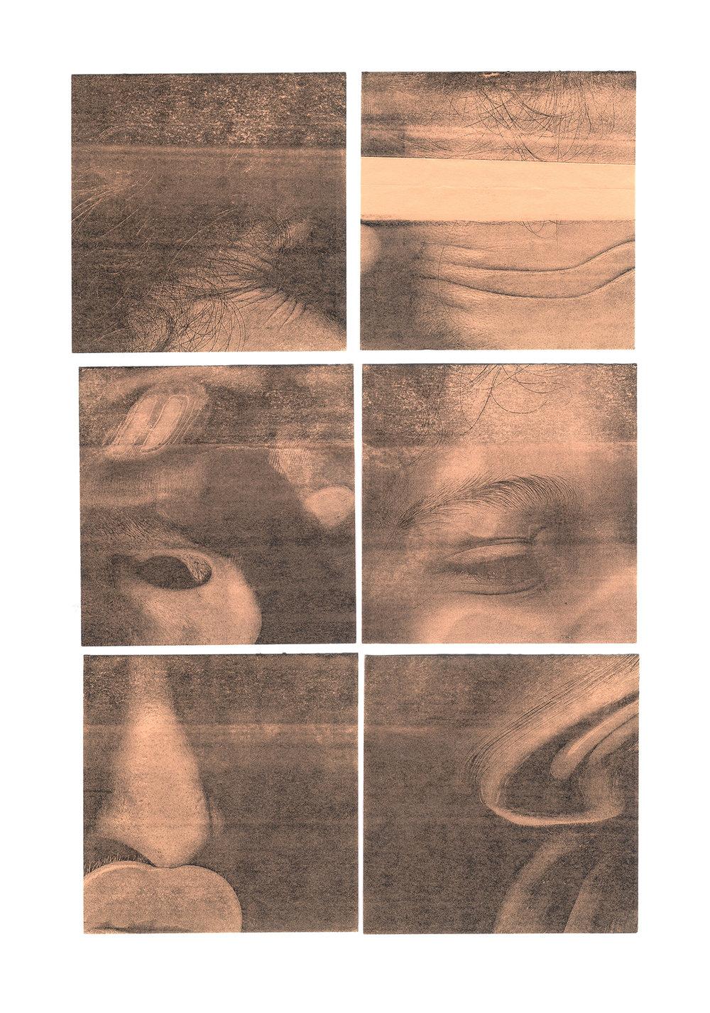 dimensions NFR2.jpg