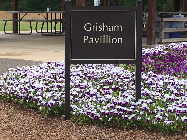 Don't miss this once in a lifetime opportunity!  On June 3, 2017 we will be having an orchid auction at the Huntsville Botanical Garden.  The bidding starts at 1:00PM, so come early to view the orchids you will be bidding on.  Our members will be available to answer your questions.