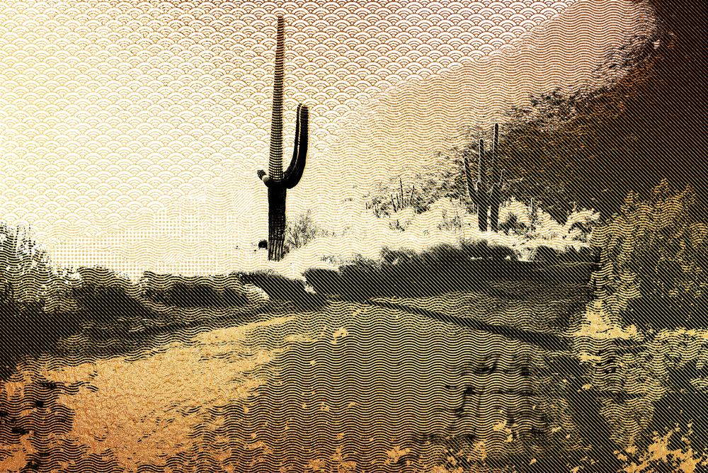 desert-2723961_FINALFLAT.png