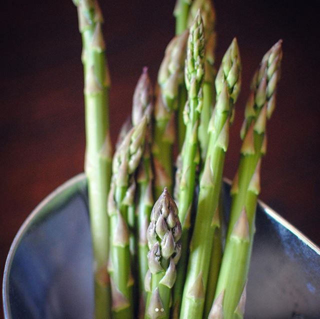 Fresh asparagus from our garden! ⠀⠀⠀⠀⠀⠀⠀⠀⠀ ⠀⠀⠀⠀⠀⠀⠀⠀⠀ +⠀⠀⠀⠀⠀⠀⠀⠀⠀ +⠀⠀⠀⠀⠀⠀⠀⠀⠀ +⠀⠀⠀⠀⠀⠀⠀⠀⠀ #garden #asparagus #herbs #gardener #athome #lifestyle #veggies #upclose #herbgarden #grow #green #growyourownfood #food #foodie #fresh #freshveggies #ourgarden #nothingisordinary #momswithcameras #mom_hub #nikon #freshfood #gardenlove #plantandgrow #gardenfreshveggies #mygarden #asparagusseason #weloveourgarden #summertimefun #yumyum