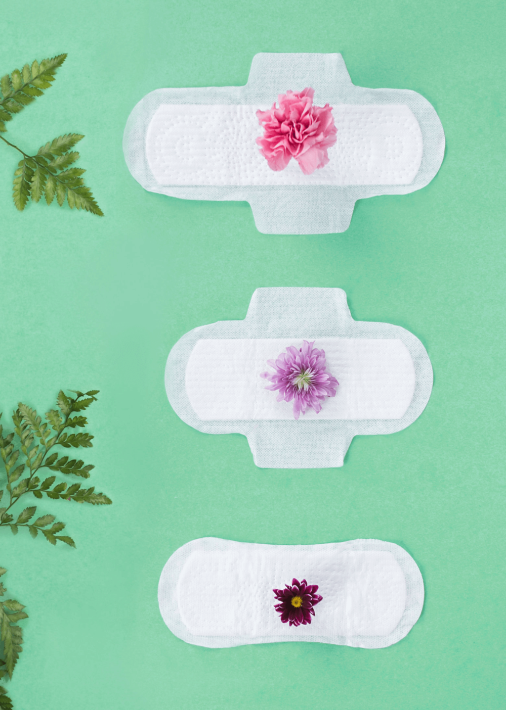 Lilli pads organic hygiene brand design, packaging design and website design