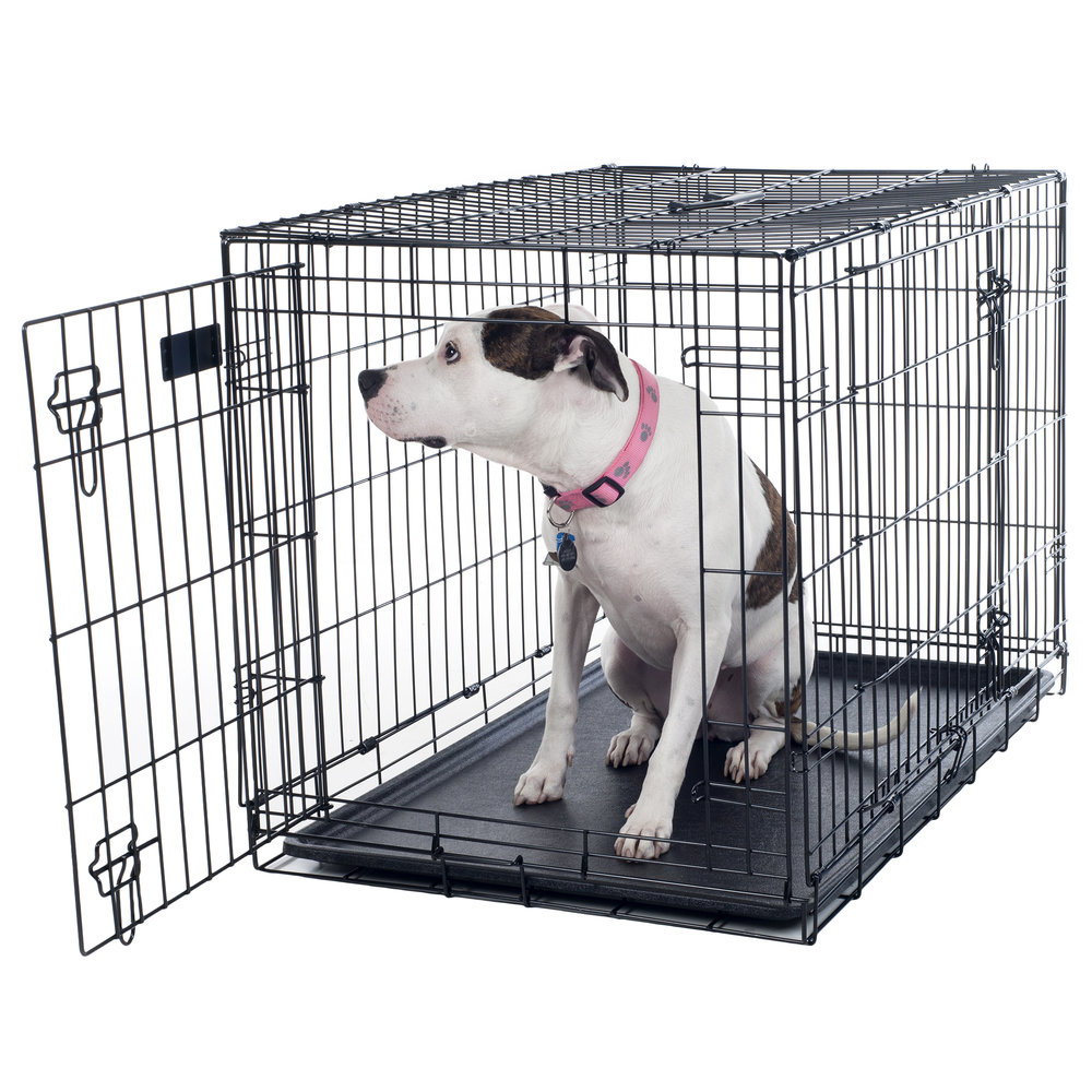 Large Folding Dog Crate
