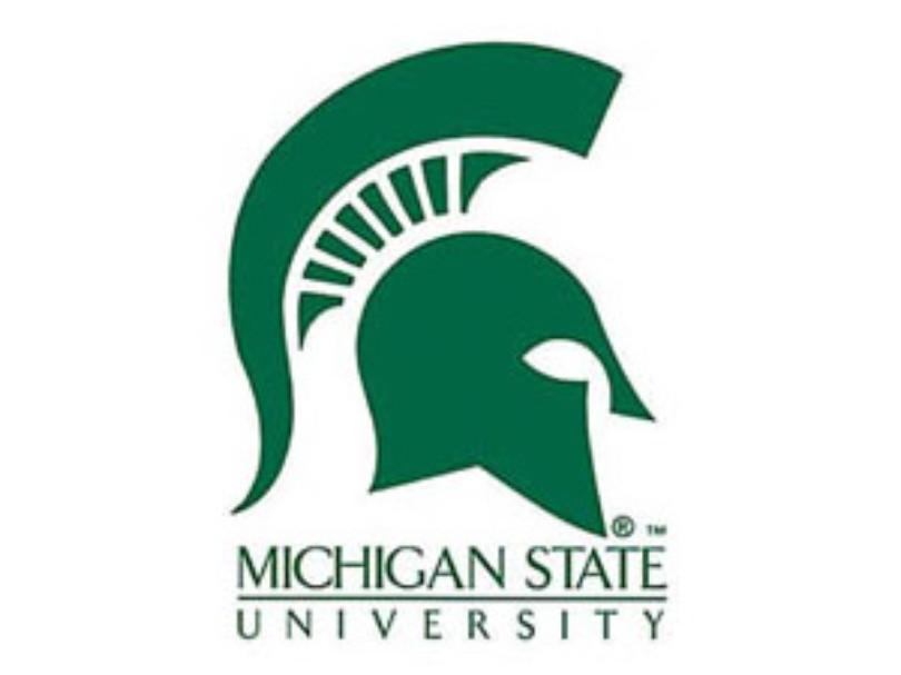 msu_michigan_state_logo_sports_wilx.jpg
