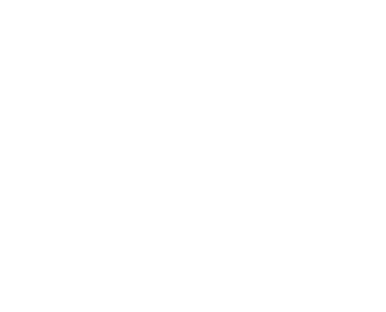 portfolio tab2.png