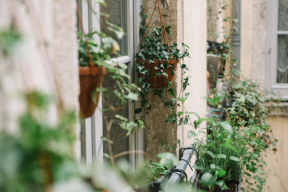 Pas de balcon chez Zelia, mais des jardinières et suspensions partout aux fenêtres !