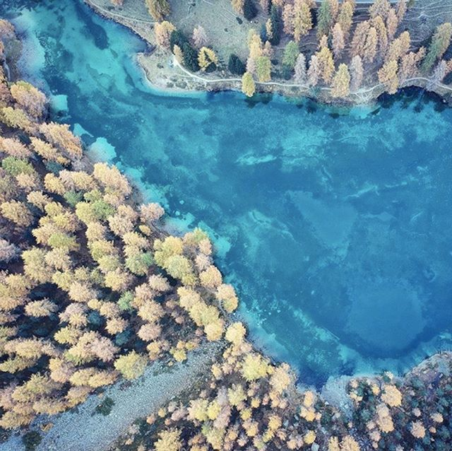 Fall Vibes. Photo by Denise Stadelmann #autumn #autumnature #dronestagram #aerialphotography #lake #azul