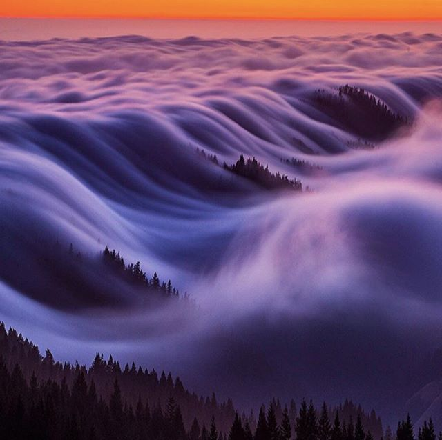 Mt. Tam in rolling fog.  Golden Gate National Recreation Area.  Photo by Nicholas Steinbert. #nicholassteinbergphotography #mttam #mttamalpais #mttamalpaisstatepark #theweatherchannel #abc7now #wildbayarea #fogwaves #fogwave #california #californiacoast