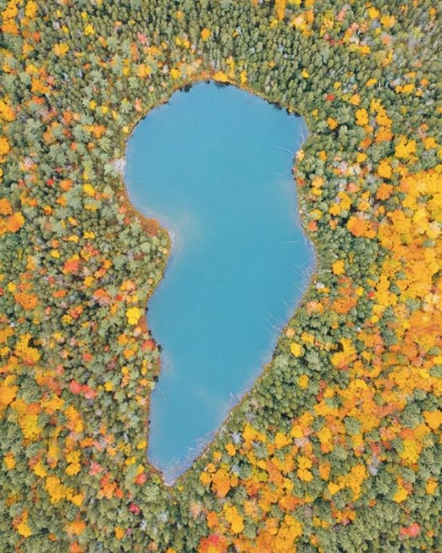 Aerial View in New Hampshire.  Photo by Matthew Hahnel.  info@matthewhahnel.com.  #autumn #autumnature #dronestagram #aerialphotography #lake #azul #newhampshire