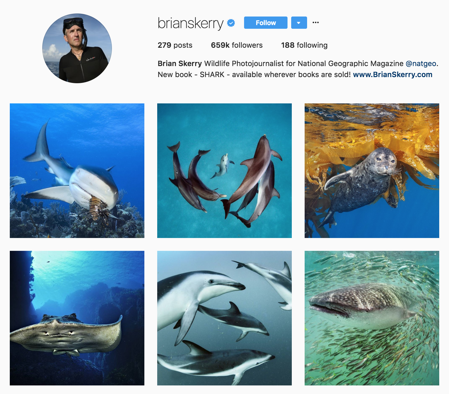 brianskerry.png