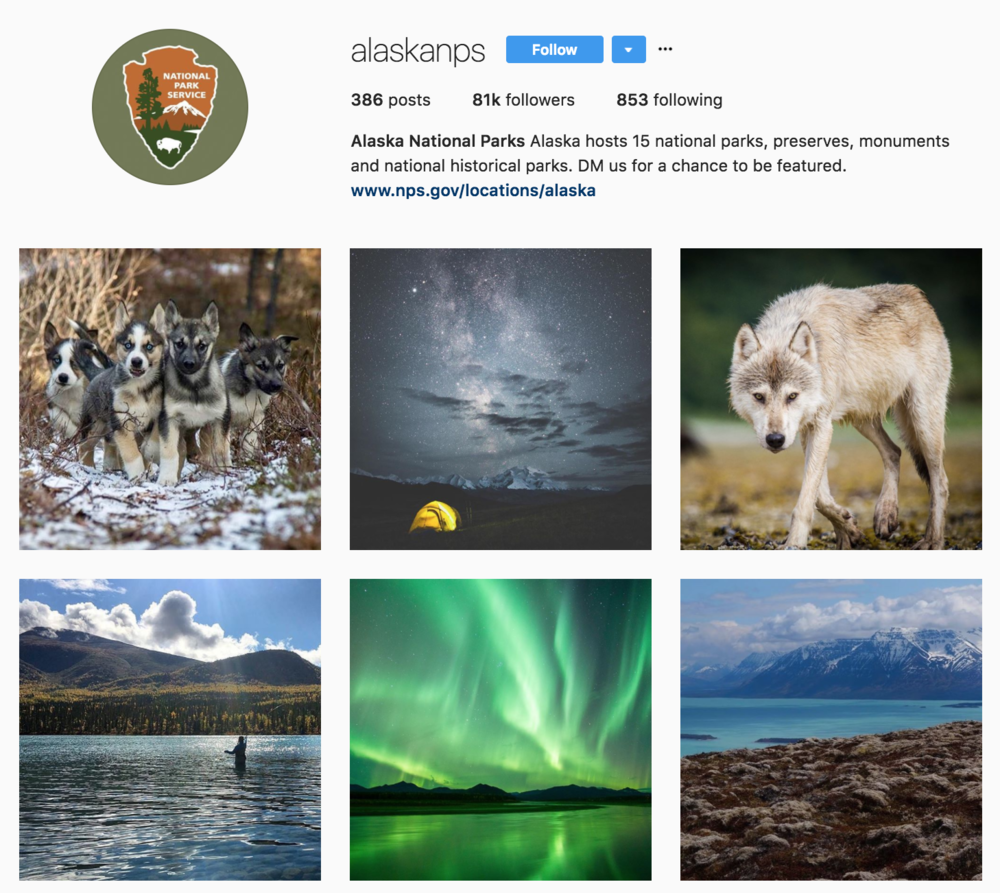 The Photographs Featured By The Official Alaska National Park Instagram Are Seriously Awesome From Newborn Gray Wolves To Massive Glaciers The Photos On