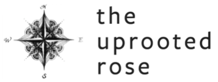 The Uprooted Rose