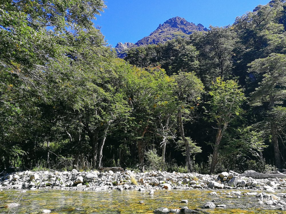 laguna negra rio negro colonia suiza hiking guide how to get to Argentina adventure explore