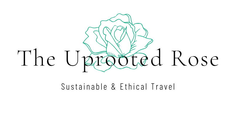 f3ac067d9f Become an Eco Explorer - follow these easy tips to travel more responsibly  while abroad — The Uprooted Rose