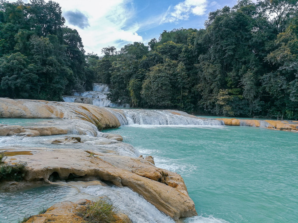 IF YOU LOVE NATURE, HERE ARE 6 REASONS NOT TO VISIT AGUA AZUL IN CHIAPAS, MEXICO. Learn the history of Agua Azul here.
