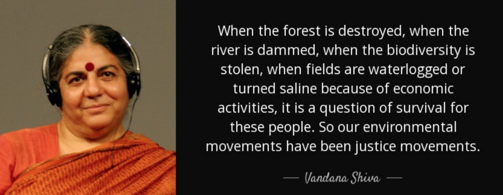 When the forest is destroyed, when the river is dammed, when the biodiversity is stolen, when fields are waterlogged or turned saline because of economic activities, it is a question of survival for these people. So our environmental movements have been justice movements.  Vandana Shiva Quotes about protecting and loving the environment from famous environmentalists and activists.