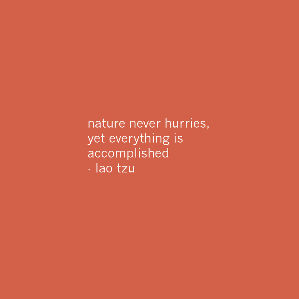 16 Nature.jpg