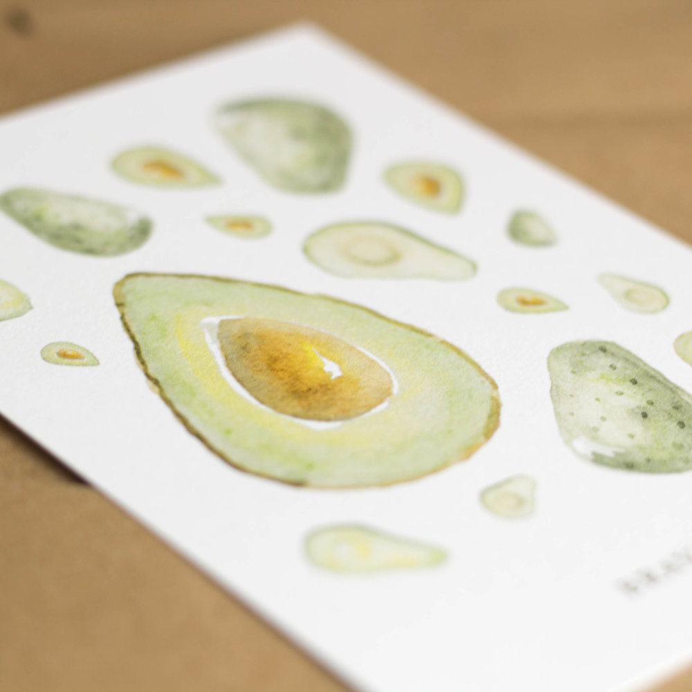 Avocado Watercolor Illustration