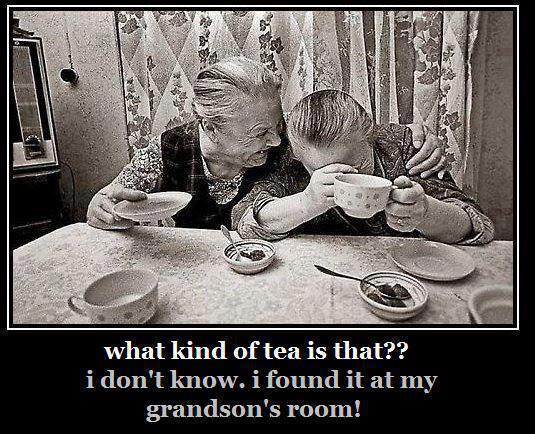 Grannies drinking cannabis tea