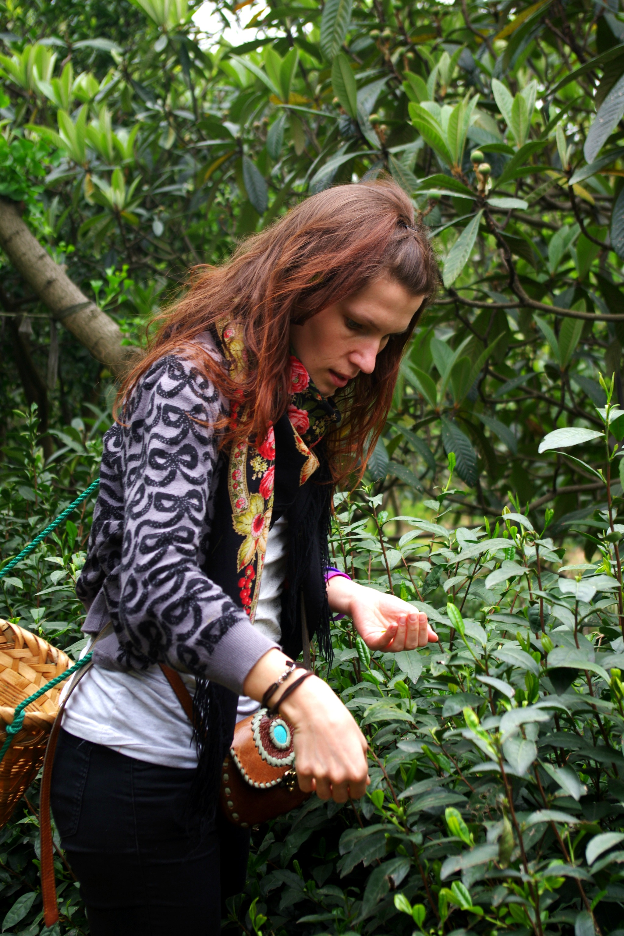 Lera in the tea field3