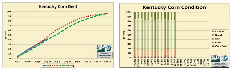 Corn condition is 79% good to excellent, down 4% from last week. 95% has silked, and 80% in milk stage. 64% in dough stage.